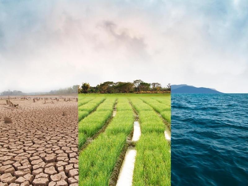 Dónde puedo invertir si quiero contribuir en el cambio climático