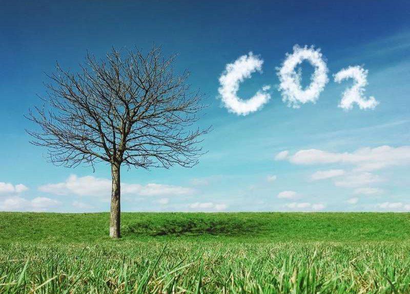 10 claves para entender la huella de carbono