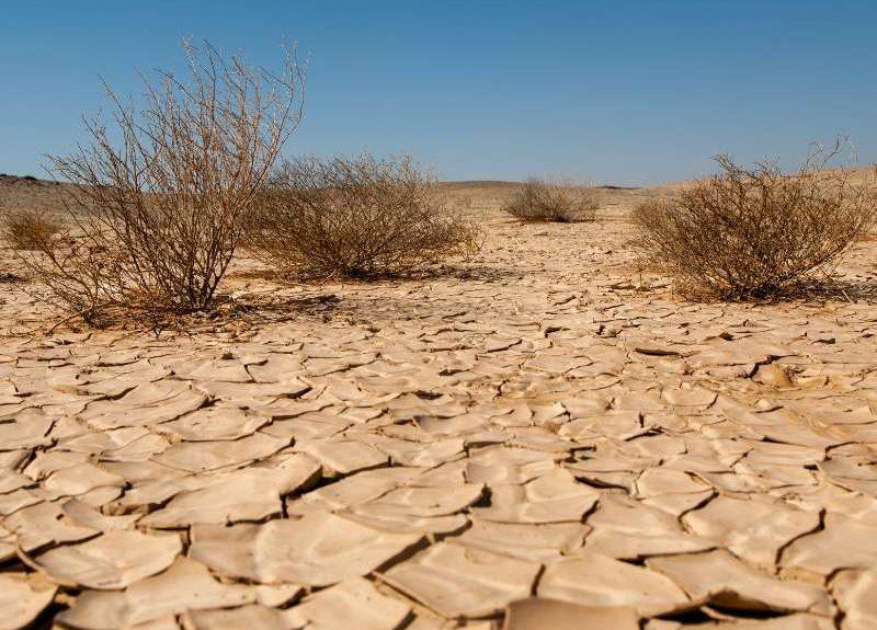 Los peligros de la desertificación
