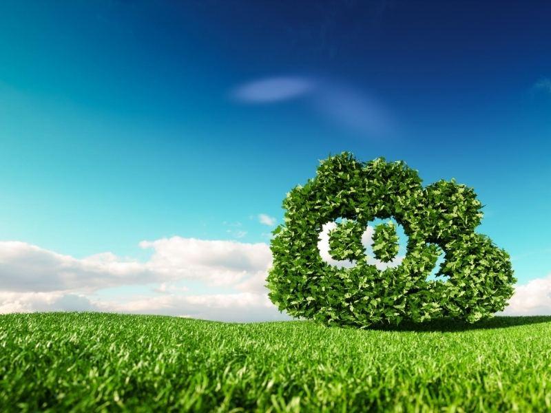 ¿Qué estás haciendo para reducir las emisiones de carbono?