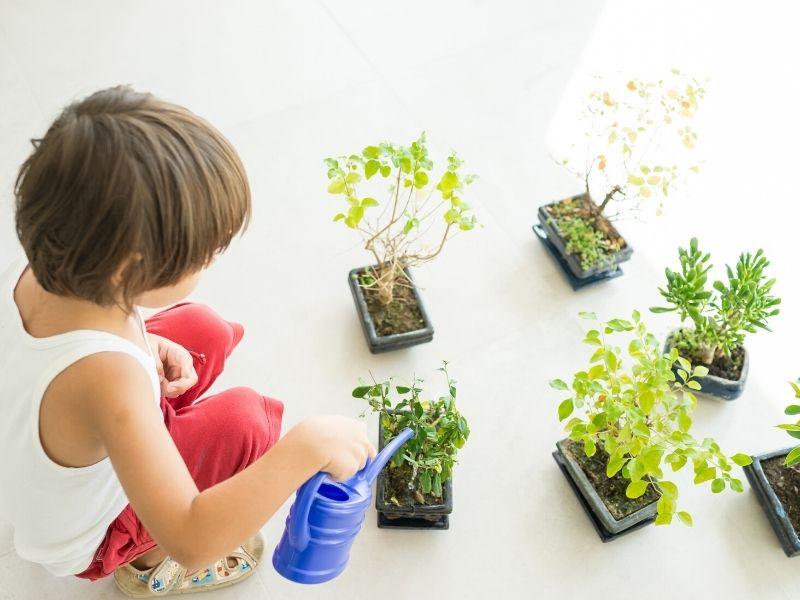Actividades infantiles para un mundo más sostenible
