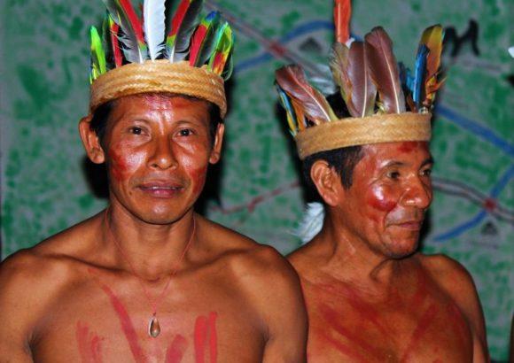 Tayazú, adopta un árbol en la Amazonía